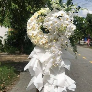 hoa đám tang tam kỳ (1)