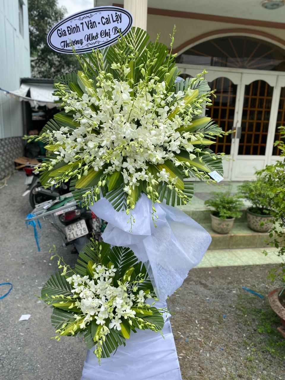 hoa tang lễ củ chi
