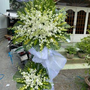 hoa đám tang thái hòa